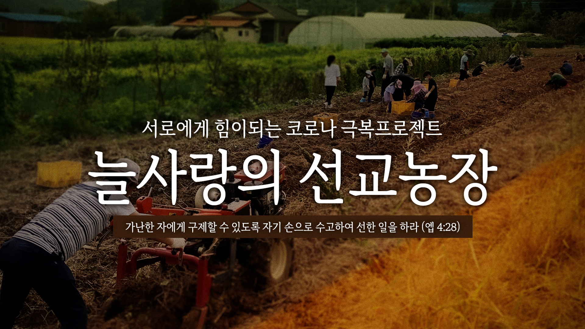 2021-10-03-고구마수확-title.jpg